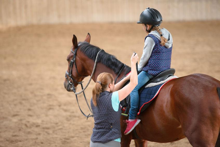 horse camp rochester ny